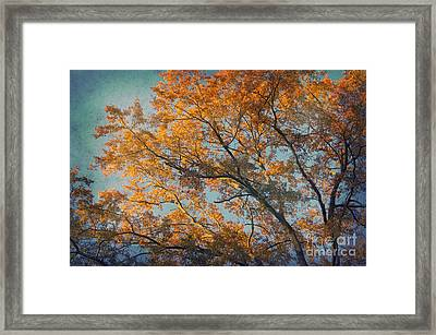 Vintage Autumn Framed Print by Angela Doelling AD DESIGN Photo and PhotoArt