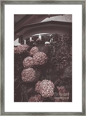 Vintage Bayview Window Surrounded By Red Flowers Framed Print by Jorgo Photography - Wall Art Gallery