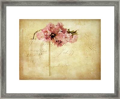 Vintage Cherry Framed Print by Jessica Jenney