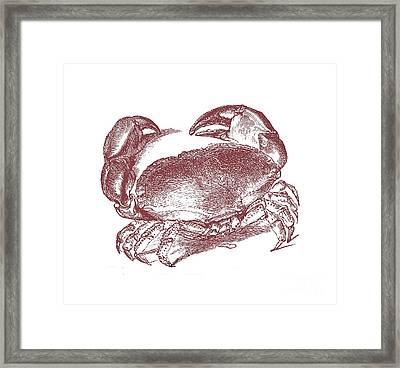 Vintage Crab Tee Framed Print