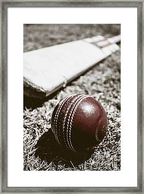 Vintage Cricket Framed Print