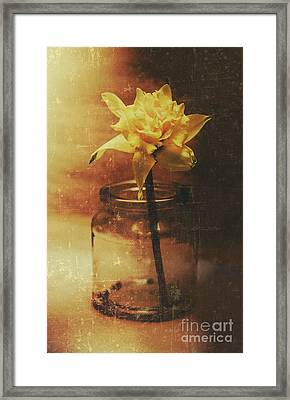 Vintage Daffodil Flower Art Framed Print by Jorgo Photography - Wall Art Gallery