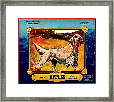 Framed Print featuring the painting Vintage English Setter Apples Advertisement by Peter Gumaer Ogden