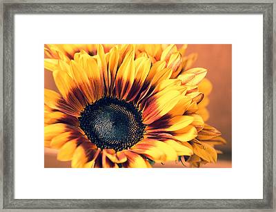 Framed Print featuring the photograph Vintage Fall by Julie Andel