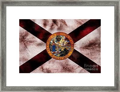 Vintage Florida Flag Framed Print by Jon Neidert