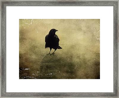 Vintage Fog Crow Framed Print by Gothicrow Images