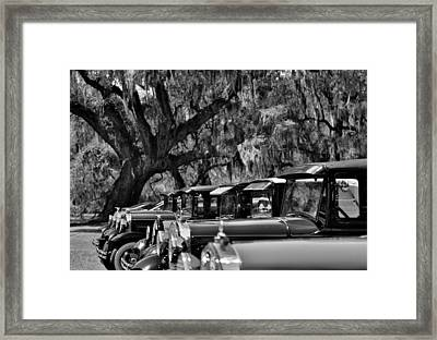 Vintage Ford Line-up At Magnolia Plantation - Charleston Sc Framed Print