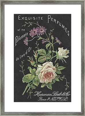 Vintage French Perfume  Framed Print