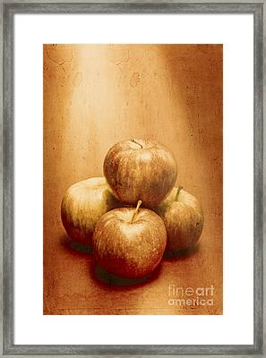 Vintage Fruits Framed Print