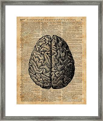 Vintage Human Anatomy Brain Illustration Dictionary Book Page Art Framed Print by Jacob Kuch
