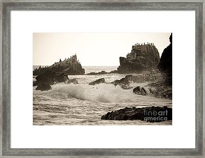 Vintage Laguna Beach Cove Framed Print by Lillian Michi Adams