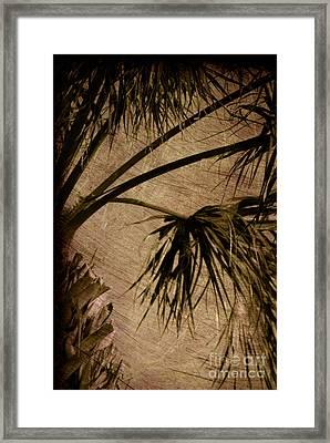 Vintage Palm Framed Print