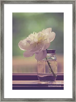 Vintage Peony Flower Still Life Framed Print by Edward Fielding