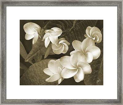 Framed Print featuring the photograph Vintage Plumeria by Ben and Raisa Gertsberg