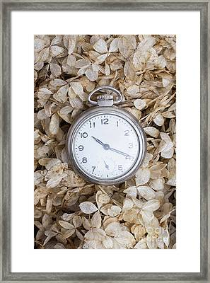 Framed Print featuring the photograph Vintage Pocket Watch Over Dried Flowers by Edward Fielding