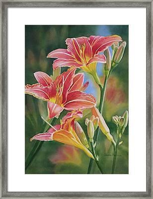 Vintage Red Orange Lilies Framed Print by Sharon Freeman