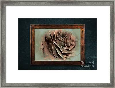 Vintage Rose On Old Wall 2 By Kaye Menner Framed Print by Kaye Menner