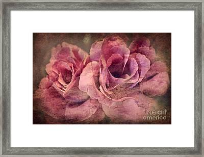 Vintage Roses - Deep Pink Framed Print by Judy Palkimas
