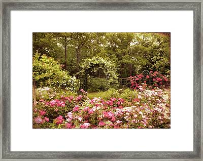 Vintage Roses Framed Print by Jessica Jenney