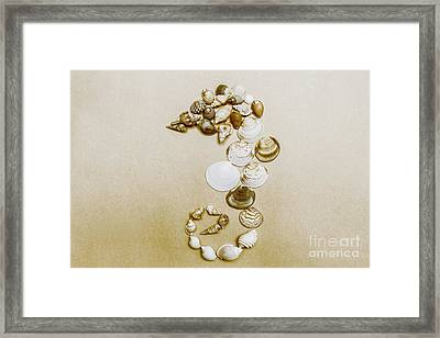 Vintage Seahorse Made Of Sea Shells Framed Print by Jorgo Photography - Wall Art Gallery