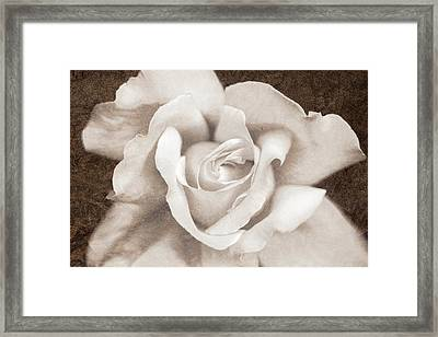 Framed Print featuring the photograph Vintage Sepia Rose Flower by Jennie Marie Schell