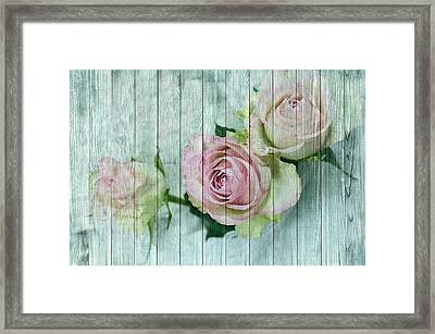 Vintage Shabby Chic Pink Roses On Wood Framed Print