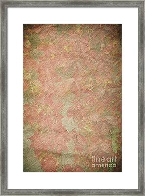 Vintage Silk Cotton Leaves Texture Framed Print by Arletta Cwalina