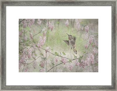 Vintage Spring Framed Print by Angie Vogel