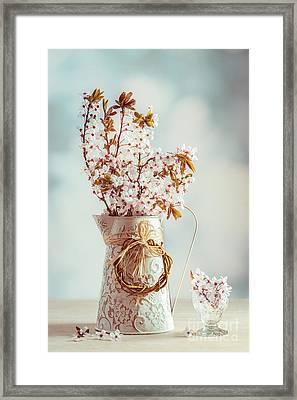 Vintage Spring Blossom Framed Print by Amanda Elwell