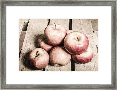 Vintage Still-life Apples Framed Print by Jorgo Photography - Wall Art Gallery