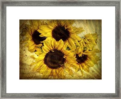 Vintage Sunflowers Framed Print