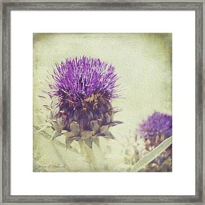 Vintage Thistle Framed Print by Laura Palazzolo