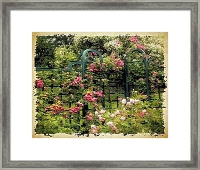 Vintage Trellis Framed Print
