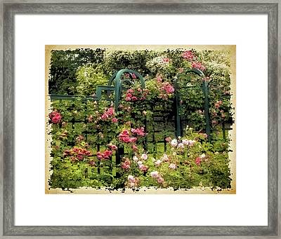 Vintage Trellis Framed Print by Jessica Jenney