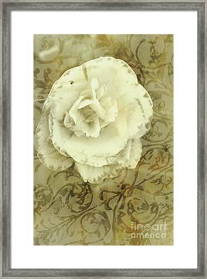 Vintage White Flower Art Framed Print