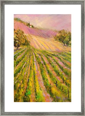 Vintners Delight Framed Print by Sally Seago