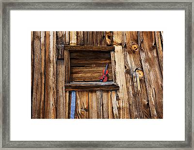 Viola In Window Framed Print by Garry Gay
