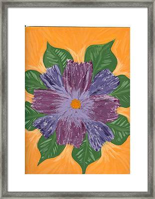 Viola Framed Print by Laura Lillo