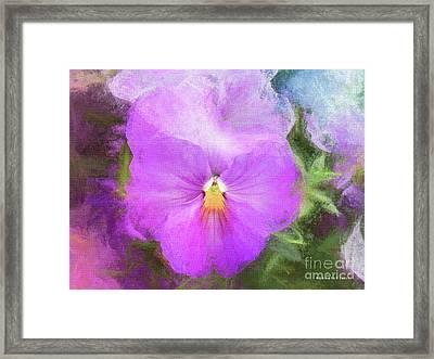 Viola Pastel Pink Soft Sorbet Framed Print