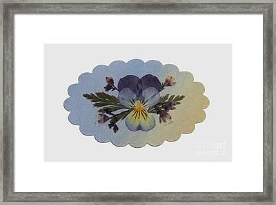 Viola Pressed Flower Arrangement Framed Print