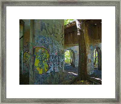 Violated Tree Framed Print by Timothy Hedges