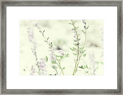 Violet And Green Bloom Framed Print