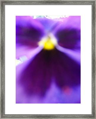 Violet Aura Framed Print by Vijay Sharon Govender
