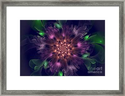 Violet Beauty Framed Print by Amy M Art Studio