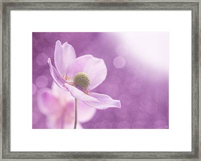 Violet Breeze Framed Print