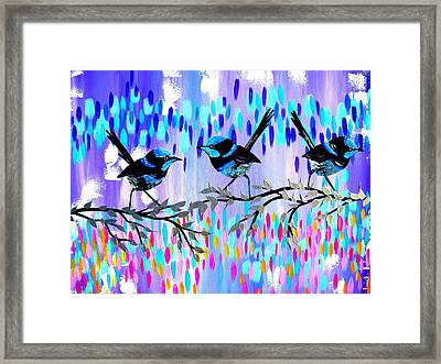 Violet Fairy Wren Glen Framed Print