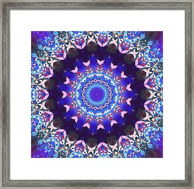 Violet Lace Framed Print by Shawna Rowe