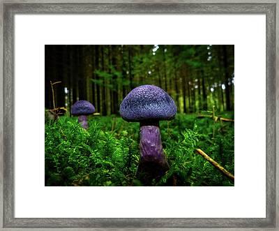 Violet Mushrooms Framed Print by Logga Wiggler