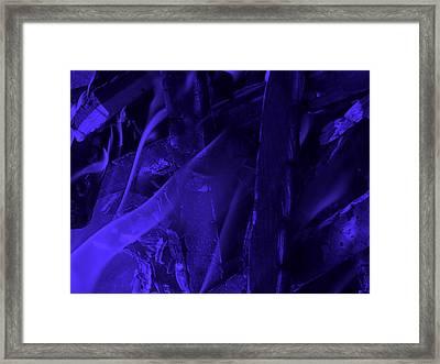 Violet Shine I Framed Print