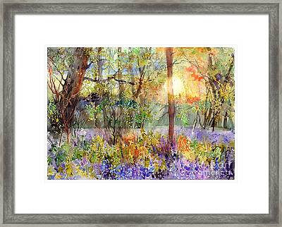 Violet Sunrise Framed Print